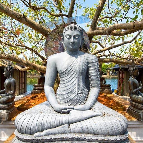 Le Boudhisme, la religion du Sri Lanka